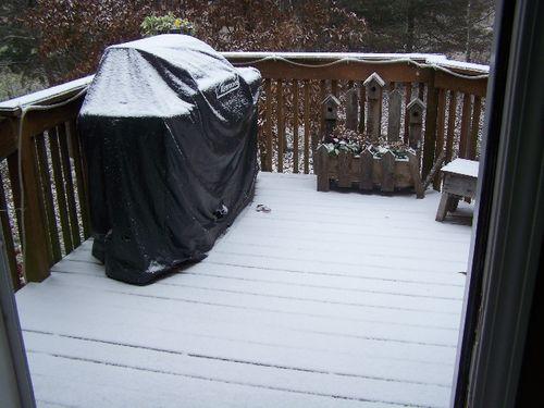 Snow 11 30 08
