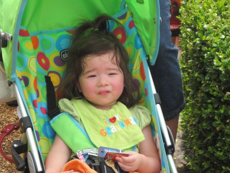 Butterfly Festival 2011 016