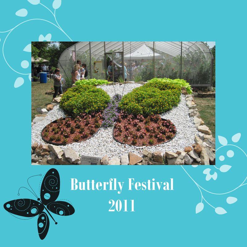 Butterfly Festival 2011-001