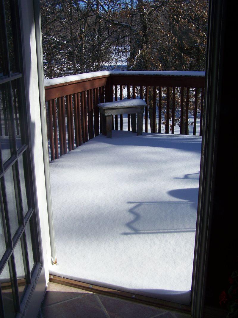 Snow 3314 005