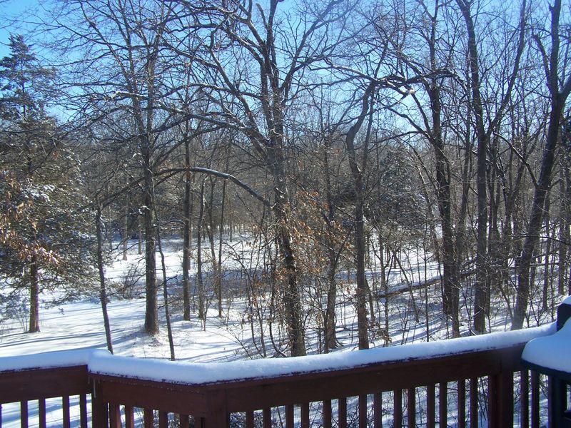 Snow 3314 008