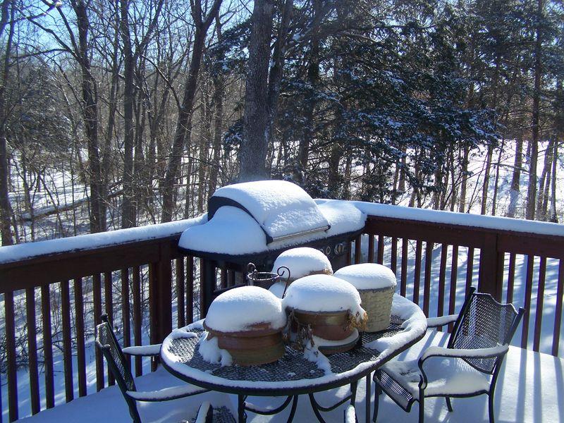 Snow 3314 007