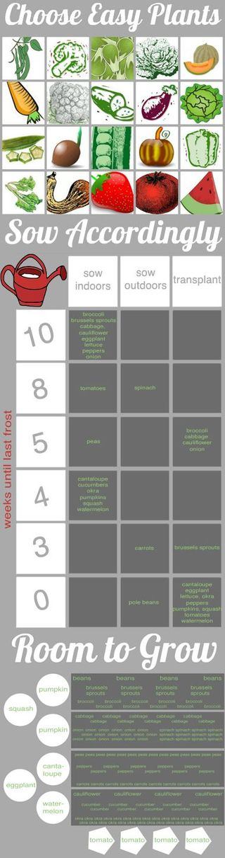 Garden planting chart